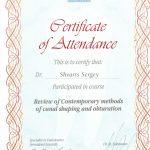Сертификат (6)